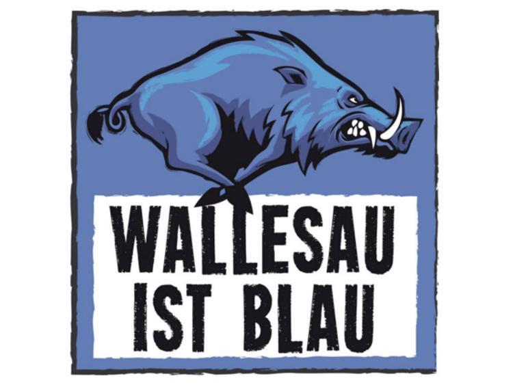 Photo zu WALLESAU IST BLAU FESTIVAL 01. ? 02.09.2017, Wallesau (Landkreis Roth, Nähe Nürnberg)