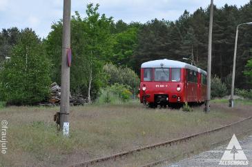 Impressionen - Immergut Festival - Neustrelitz (29.30.05.2015)