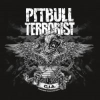 Pitbull Terrorist - CIA