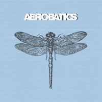 Aerobatics - Fidelity