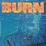 Cover von BURN - ...From The Ashes