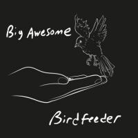Big Awesome - Birdfeeder EP