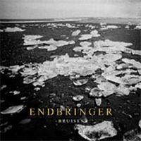 Endbringer - Bruises