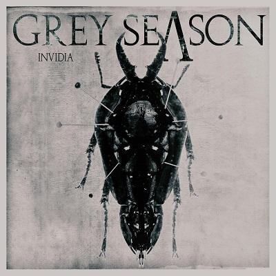 GREY SEASON - Invidia