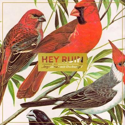 HEY RUIN - Irgendwas Mit Dschungel