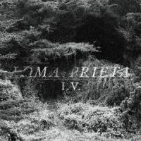 Loma Prieta - I.V.