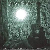 Nate - Dark Side Of A Sunny Disposition