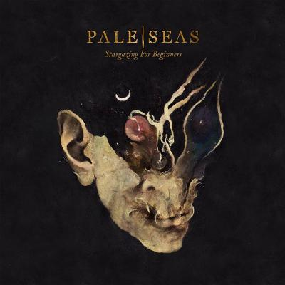PALE | SEAS - Stargazing For Beginners