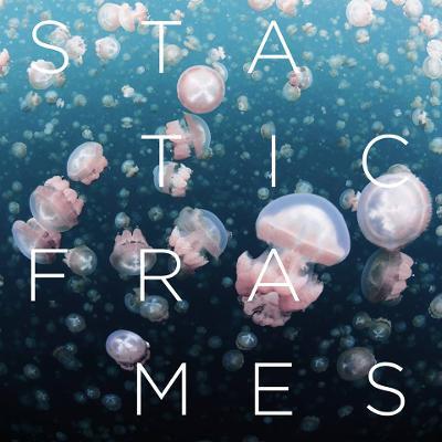 STATIC FRAMES - Static Frames