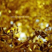 Small Brown Bike - Fell And Found