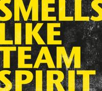 Team Stereo - Smells Like Team Spirit
