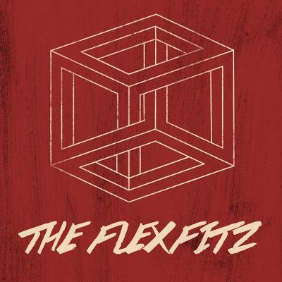 The Flexfitz - Abschied von der Illusion