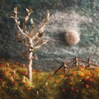 The Scene Aesthetic - The Days Ahead