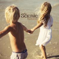 The Scenic - Bipolaroid