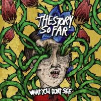 The Story So Far - What You Don´t See