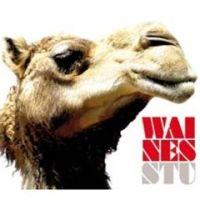 Waines - Stu