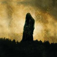 Woods Of Desolation - Toward The Depths