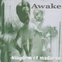 Awake - Kingdom of Madness