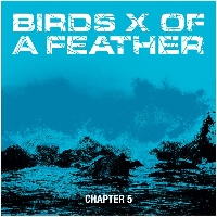 Birds X Of A Feather - Chapter 5