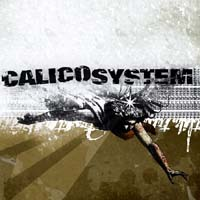 Calico System - The Duplicated Memory