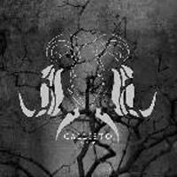 Callisto - Noir