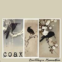 Coax - Building A Momentum