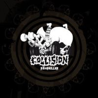 Collision - Roadkiller