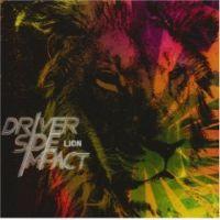 Driver Side Impact - Lion