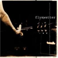 Flyswatter - Flyswatter
