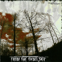 From The Dying Sky - Toward fast horizon