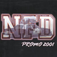 Never Face Defeat - Promo 2001