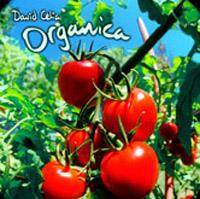 David Celia - Organica