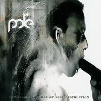 Pole - Untitled Symphonie Of Self-Destruction