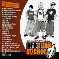V/A - Waste Of Mind\'s Pro Punkrocker 1