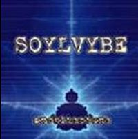 Soylvybe - Architecture