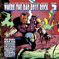 V/A - Where the Bad Boys Rock Vol. 3
