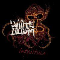 White Lilium - Tarantula